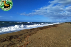 Photo_1574008894960